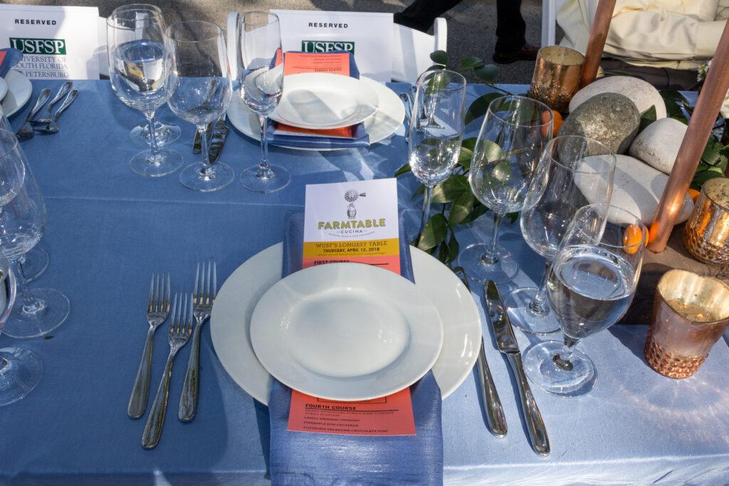 WUSF Longest Table 2018-4994